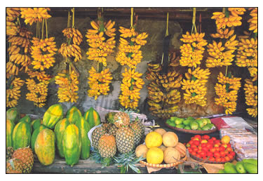 Fruitstand - Delicious Philippine fruits.