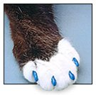cat claw covers -  cat's paw with claw covers