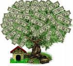 Money tree - Money tree giving money