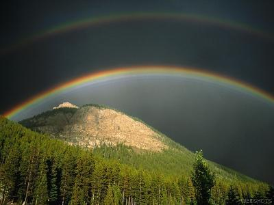 Does a rainbow mean anything to you? - Beautiful to see