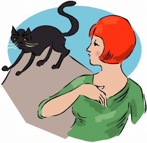 superstition - don't go when you see a black cat
