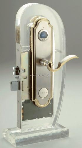 Figerprint door lock. - Can a thief break it?