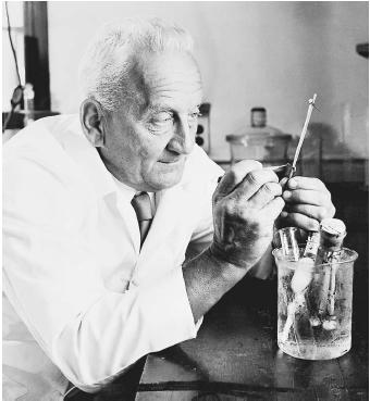 Albert Szent-Györgyi who found vitamin C - He founded vitamin C which vitamin needs everybody. Do you know he was hungarian?