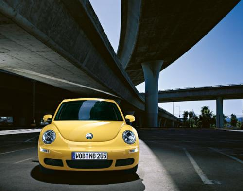 the beetle - a new age beetle. my car.