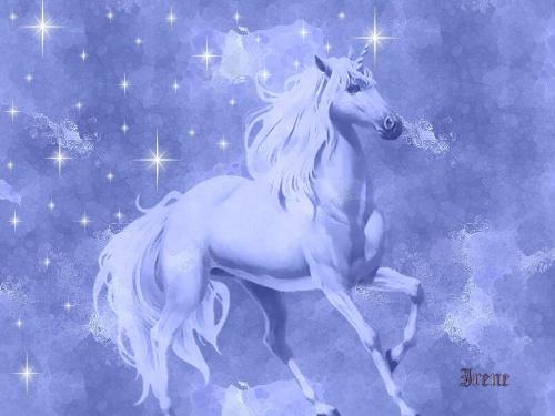 i love unicorns.. - can you see how mystical a unicorn is?
