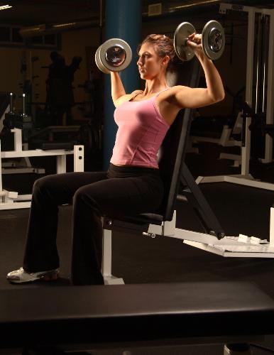 gym - weight training exercise
