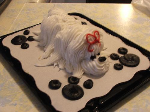 Doggie cake - This is the dogie cake my mom brought over the other night!