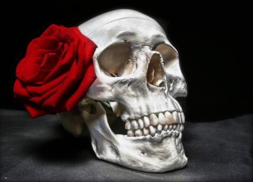 Near Death Experience... - Near Death Experience...