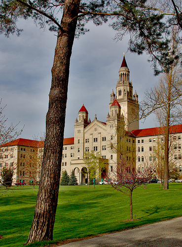 College - If you could go to college for free