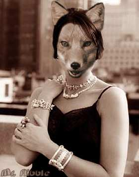 foxy chick! - g[j isjhsjhisrtjhsrhjsrthjujsr]