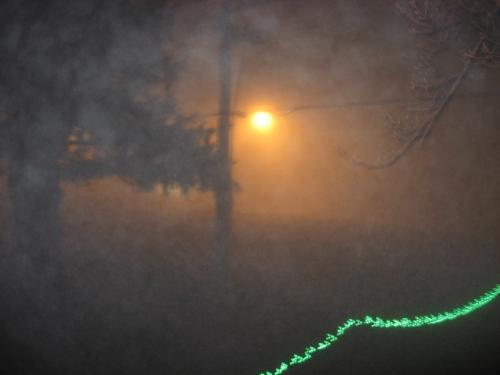 Foggy November Night - A great shot. Look closely and you can see the fog rolling in near the top of the photo.