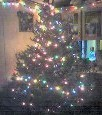 Christmas Tree - This is my tree from last year. My first real christmas tree.