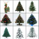 Merry Christmas - Fake or Real