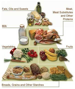 A+healthy+diet+pyramid