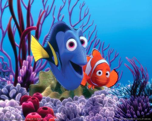 Dori and Nemo - Photo of Dori and Nemo