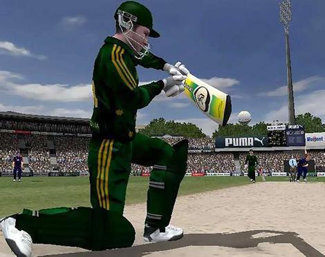 Cricket - It's cricket life