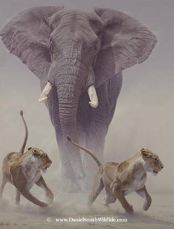 Amazing wild life paintings - Paintings of Amazing wild life