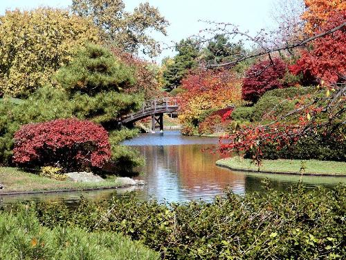 Botanical Garden - I would love to get married here.