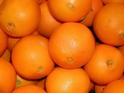 orange - oranges