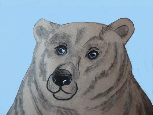 Too Fat to Be Fed? - Is it OK to refuse food to a hungry bear?