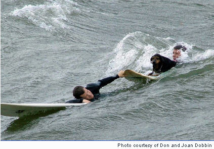 Saving Life - Saving life of a drowning man and a dog