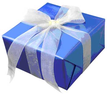 gift - wrapped gift