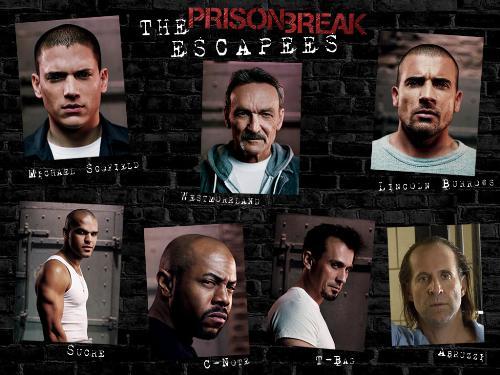 """prison break - We all like """"PB""""!!!"""
