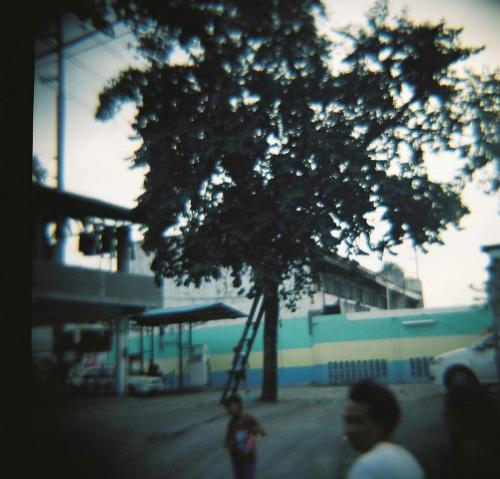 lomograph - a picture taken with a diana+, a lomo camera