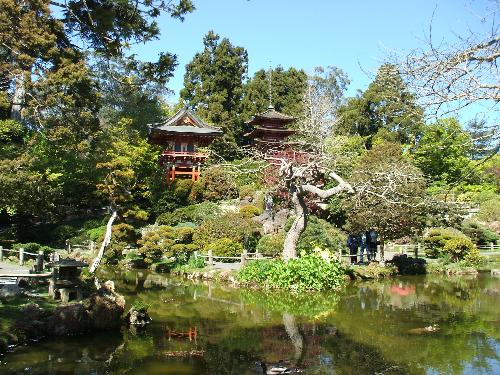 Japanese Tea Garden in San Francisco - This was taken in April '07 at the Japanese Tea Garden in San Francisco which is located inside of the Golden Gate Park. It was just beautiful there & I highly recommend visiting if you are ever in the area. The flowers & other foliage are just amazing!