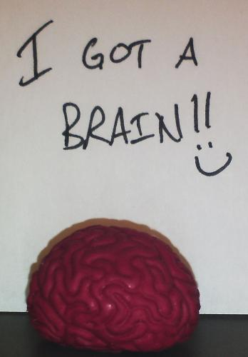 My brain - I took a picture of my brain to show that I have one of my own. It bounces, too.