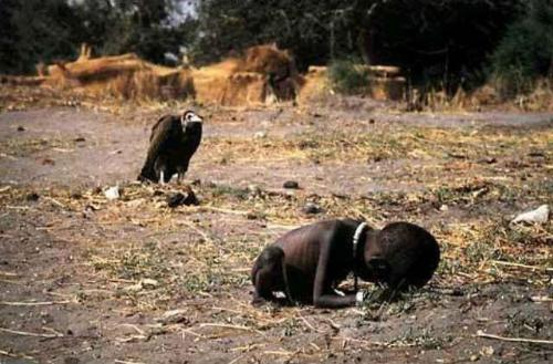 Sudanese child - An emaciated Sudanese child crawling towards a United Nations Food camp located a kilometer away, while a vulture sits behind, seemingly waiting for the child to die so he could finally devour her remains.