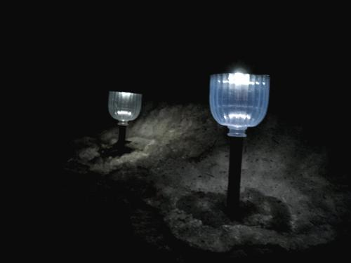 Solar Lights - I have a few of these in my front yard.
