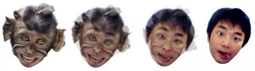 Evolution Monkey - I editted this picture by myself and thinking to put it in my blog and share the tricks how to do it. What do you think?