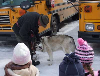 my daughter and wolf - my daughter with a wolf at the sugar bush