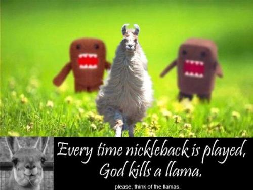 Llama haters - Ha ha ha someone made this for a site on nickleback a long time ago, I saw it and it made me crack up, and still does everytime I see it...