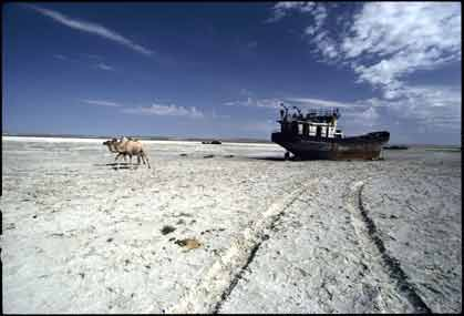 the so called aral sea - it used to be a sea once. now, it turned out to be a mere ship cemetery.