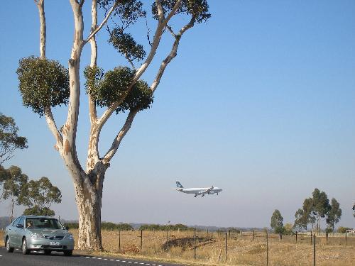 Plane landing heading for the airport - Plane landing at Tullamarine Airport 2008, photo takemn at Bulla.
