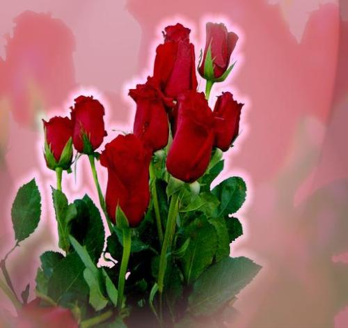 Its the sign of love,,,, red roses - Its a bunch of flowers.. that represents love,,,,,,