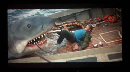 a pic from jaws - terrible fake shark