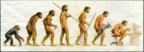 human evolution - humanevolution