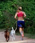 jogging - jogging