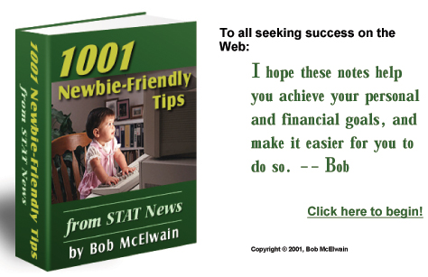 1001 Newbie Freindly Tips - To all seeking success online. A book must read to get what you want and how to sell your site.