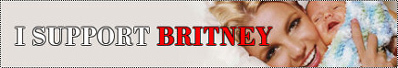 support - I support britney.