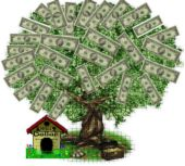 money tree - I wish this was real!