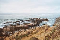 Moon Stone Beach In Cambria, California - This is a view of the ocean at Moon Stone Beach in Cambria, California just across the street from our hotel room.