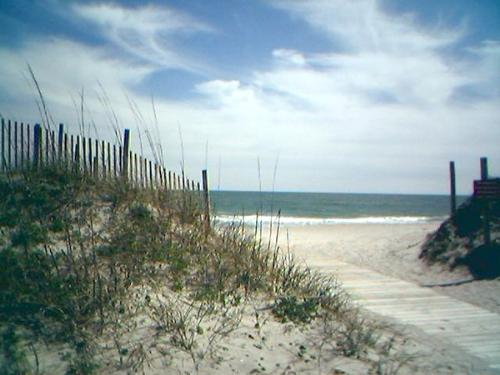 Onslow Beach, NC - I took this picture with my phone one day. I can't believe it came out as good as it did! This is Onslow Beach, NC aboard Camp Lejeune. I lived not far from here for many years and have walked/run lots of miles along this beach.