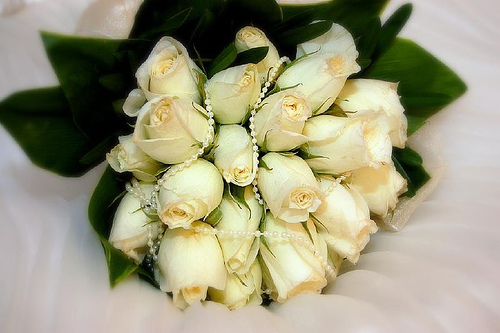 White - Chastity and Sincerity - White flowers for me represent these. I love white roses! Hehe.