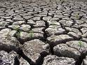 desertification - Picture of long distance of dry ground with mud peeling up like a ocean dried up