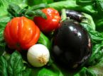 vegetables - Knowing How To Eat Sensibly, But Still Can't Do It?