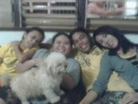my friends.. - liezel,ate chat,adrian,me and ashley my lovely dog
